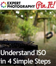 Understand ISO in 4 Simple Steps
