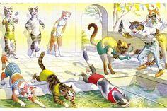 Cats Alfred Mainzer