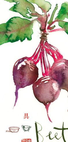 Vegetable poster Watercolor Beet print Art for by lucileskitchen