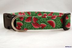 Watermelons are the fruit of Summertime! We love this Summer Watermelon on Green Dog Collar!!! YUM!