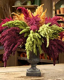 Amazing Amaranthus Arrangement...  leave it to Martha!