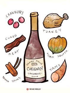 Carignan Red Wine Taste & Food Pairing Illustration by Wine Folly