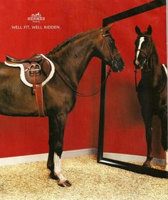 """Hermès Paris, originally """"un sellier,"""" or saddle maker, still makes the finest all made by hand saddles."""