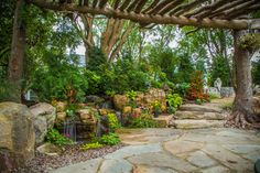 Tree and Waterfall Inspired Backyard - traditional - landscape - chicago - Aquascape Inc.