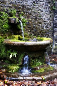 Lismore Castle Water Feature by Wayne.Brown