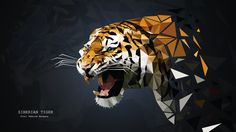 Tiger by morgana2194.deviantart.com on @DeviantArt