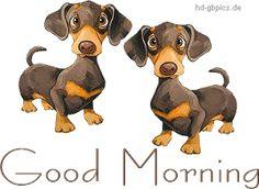 Guten Morgen Bild