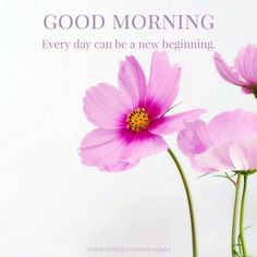 Good Morning. Every day can be a new beginning.