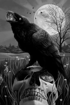 crow sitting on a skull with a bead in it's mouth and a moon behind it