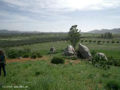 4 Hectáreas Valle de Guadalupe (664) 686 2120