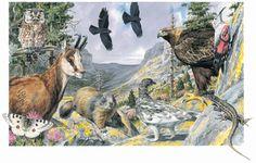 Ecosistema pirinaico