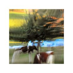Shot by Matthias Günter Street Photography, Landscapes, Mood, Travel, Painting, Inspiration, Art, Paisajes, Biblical Inspiration