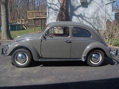 Volkswagen : Beetle - Classic gray 1964 VW Beetle, original, never restored - http://www.legendaryfind.com/carsforsale/volkswagen-beetle-classic-gray-1964-vw-beetle-original-never-restored-2/