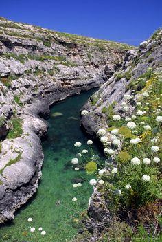 Fjord at the Ghasri Valley on the northern coast of Gozo Island, Malta, Mediterranean, Europe