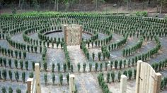 """Tyler Goodson posted images of John B. McLemore's maze, made famous by the """"S-Town"""" podcast. Let's enjoy them before it's gone"""