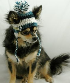 Dog hat crocheted, Variegated Dark Teal and Winter White, Small or Xsmall One of our most popular hats! Hand crocheted dog ear flap hat with braids Mery Crismas, Hand Crochet, Crochet Hats, Popular Hats, Dog Sweaters, Christmas Dog, Pet Clothes, Crochet Animals, Fur Babies