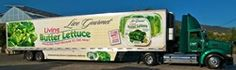 Hollandia Produce commits to reducing our carbon footprint. Read how we take sustainability on the road.#cleanenergy#hollandiaproduce #livegourmet #sustainability