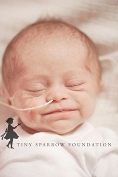 Tiny Sparrow Foundation | A Non Profit Organization » A Picture of Hope