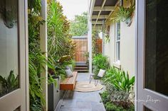 © Adam Robinson Design Sydney Outdoor Design and Styling Landscape Stanmore Project Backyard Patio, Backyard Landscaping, Modern Landscaping, Backyard Ideas, Container Gardening, Gardening Tips, Landscape Design, Garden Design, Terrace Design
