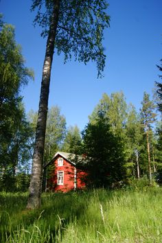 http://swearme.blogspot.fi/   #photograhy #cottage #summer     Summer is best spent in a place you basically grew up. This scenery is the same my ancestors saw.  ©Marika Lindström