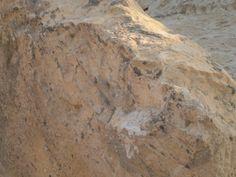 During excavations of the front-castle, the authentic signet of Walram de Rosse was found.  www.kasteelruinevalkenburg.nl #castle #ruins #valkenburg #cave #archeology