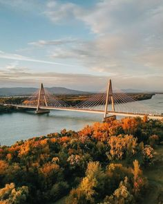is taking over everything Cable Stayed Bridge, Daily Pictures, Budapest, Architecture, World, Places, Instagram, The World, Suspension Bridge