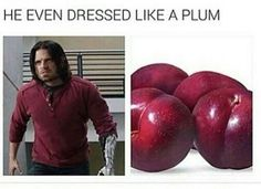 OH. MY. GOSH. IVE BEEN CRYING FOR 20 MINUTES THIS IS HILARIOUS XD <<< OHMYGOSH GUYS all he wanted was plumbs... Someone just give him a plumb. He deserves plums.
