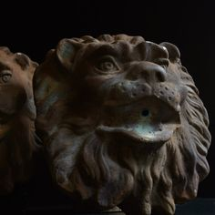 Pair of Mounted Fountain Lion Masks, Circa 1920-hunter-and-rose-DSC_0170_ok_1024x1024_main_636154934080915799.jpg