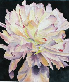 PEONY an original watercolor painting by YvonneWagnerStudio