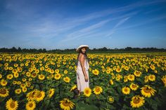 Elaisha Jade visits Edward's Farm Store in Innisfi Ontario with Ford Canada and gives her tips and tricks for how to live your best life with her favourite Life Hacks! Sunflower Fields, Ontario, Life Is Good, Life Hacks, Ford, Canada, Adventure, Travel, Fashion