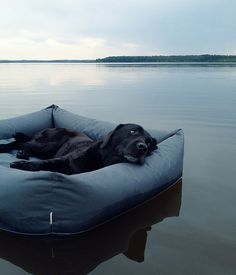 DESIGN | The hip hounds over at Cloud 7 are launching an outdoor version of the cult-classic, Sleepy Deluxe bed for pooches that like to snooze alfresco
