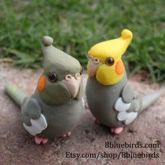 Show some cockatiel love with a pair of cinnamon cockatiels. Their orange cheeks are styled in a playful spiral, and their body is a warmer shade of grey than a normal cockatiel. This unique set comes