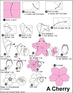 Kirigami Cherry Blossom - Round the petal cut to make a hibiscus flower.