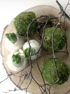 summer plants This impression (spring decorative fireplace awesome especially moss balls for our cam Deco Floral, Arte Floral, Christmas Flowers, Christmas Diy, Spring Decoration, Spring Bulbs, Ikebana, Christmas Inspiration, Spring Flowers