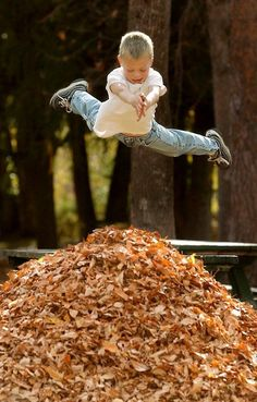 Jumping in Leaves..  Have your children take turns jumping into leaf piles, try to have them land on their feet when they jump in.