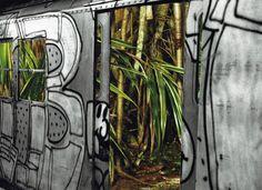 Urban Jungle Collage by Leia Nagora