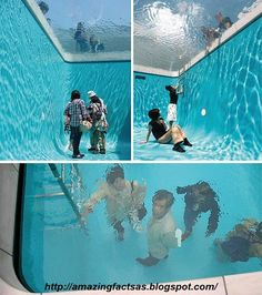 11 Best Pool Facts images | Swimming pools, Pool landscaping ...