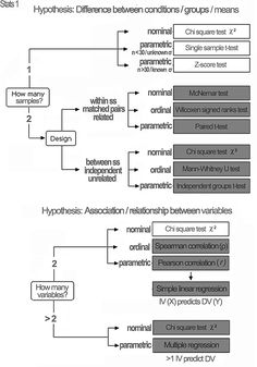 Epidemiology statistical tests flow diagram online schematic diagram 68 best statistics images on pinterest gym school and science rh pinterest com acceptance test flow diagram acceptance test flow diagram ccuart Image collections