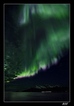 Needles in the sky 3 by Ole C. Salomonsen, via Flickr