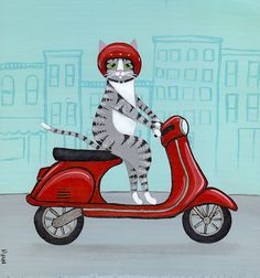 Grey tabby on a red Vespa on Flickr.