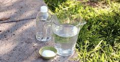 Mnoho záhradkárov nechce používať toxické prostriedky vo svojej záhrade. Existuje však jeden veľmi účinný a efektívny spôsob. Je to osvedčená a účinná metóda ničenia burín a všetkých zbytočných rastlín prípravkom pripraveným z obyčajných surovín z … Summer House Garden, Home And Garden, Glass Of Milk, Glass Vase, Vineyard, Balcony, Vine Yard, Vineyard Vines