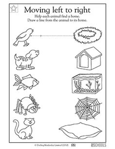 Connect the animal to its home - Worksheets & Activities | GreatSchools