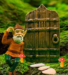 Tiny fairy door.