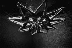 Synchronized Swimming by Tomasz Gudzowaty