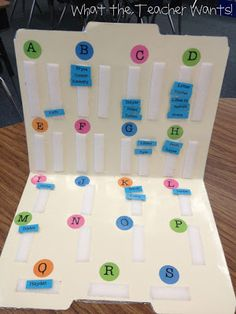 Guided Reading level folder- Love this.  I did something VERY similar but love the idea of velcro tabs...wish I had thought of that!
