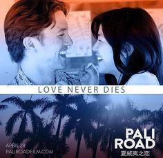Love never dies. Jackson Rathbone, Love Never Dies, Twilight, Romance, Movies, Movie Posters, Life, Romance Film, Romances