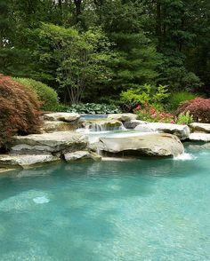 Tranquil waterfall pool surrounded by ample natural goodness