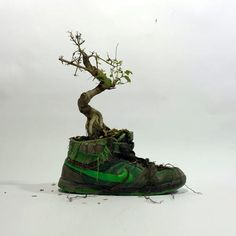 3 | Organic Nikes Made From Flowers And Bark | Co.Design | business + design