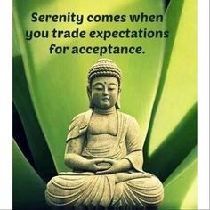 Serenity comes when you trade expectations for acceptance.