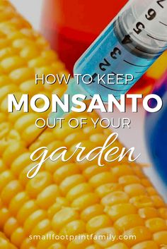 Monsanto is a company no gardener should want to support, even accidentally. Here is how to find seeds that aren't affiliated with GMOs or Monsanto in any way, and why it is so important.